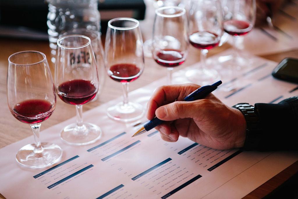 pinot noir wine tasting rent a vine