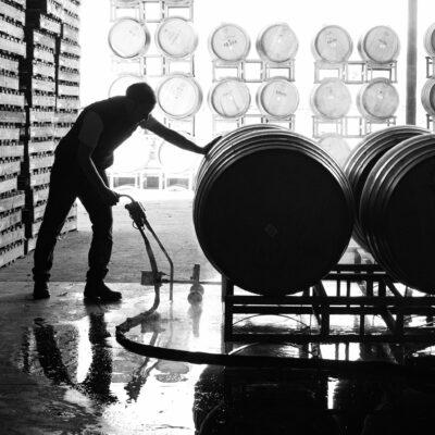 fermenting wine in barrels